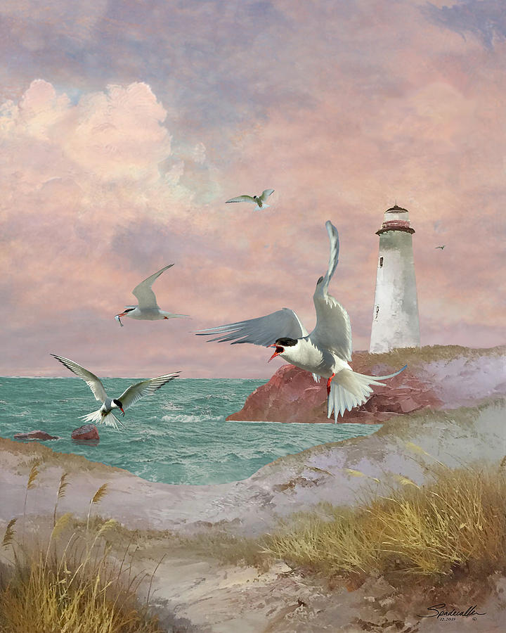 Lighthouse and Terns by Spadecaller