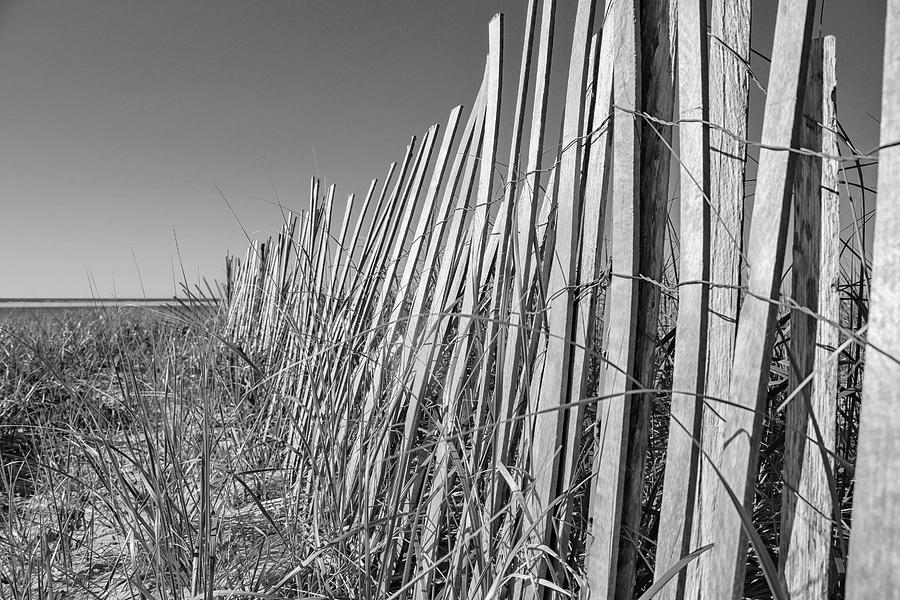 Lighthouse Beach Fence in Black and White by Marisa Geraghty Photography