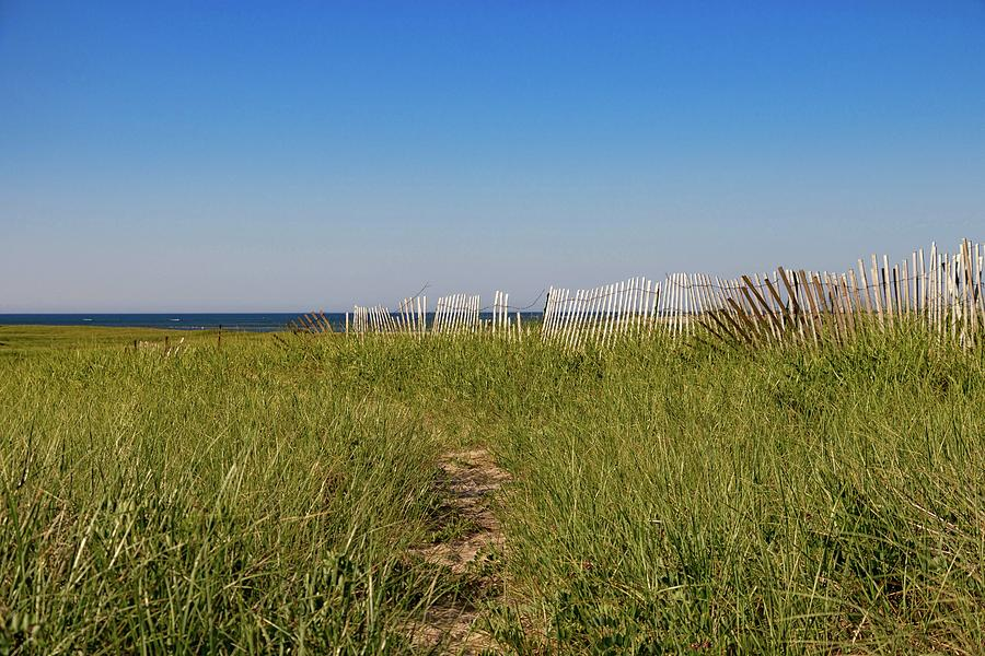 Lighthouse Beach Path by Marisa Geraghty Photography