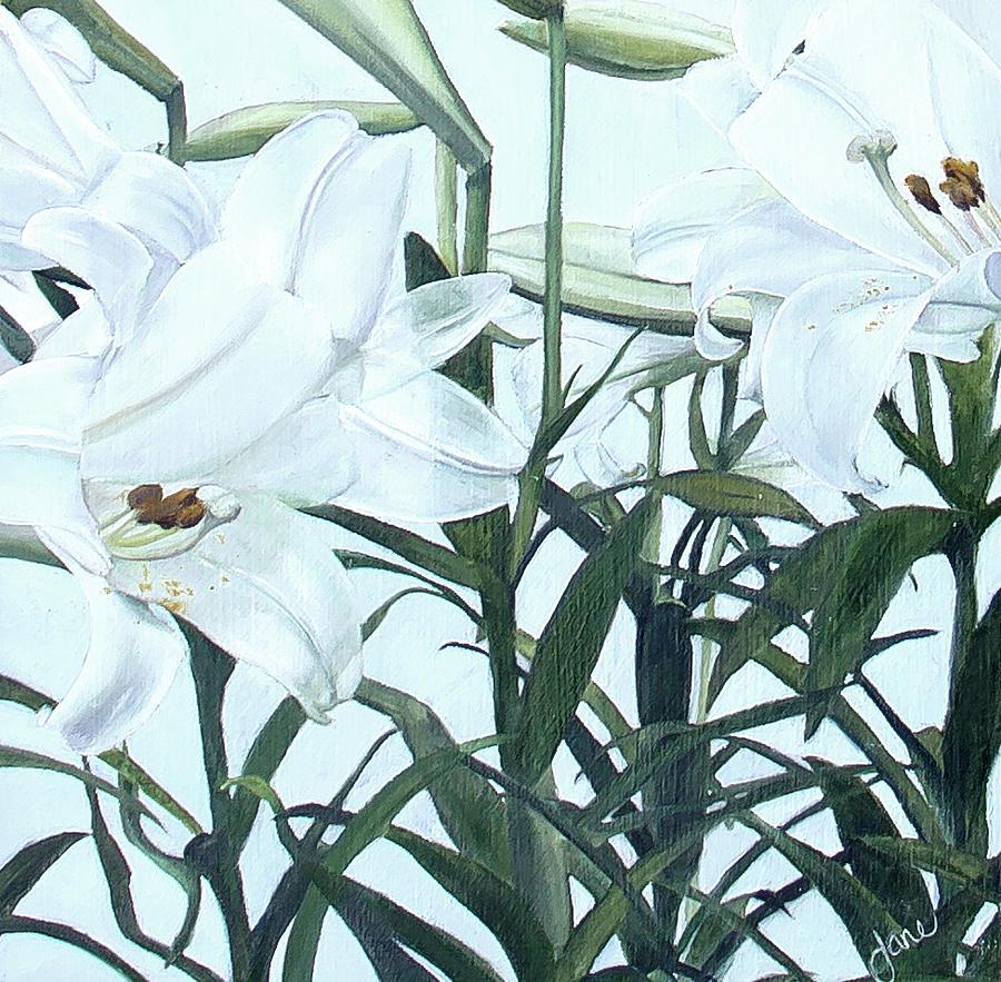 Lilies by Nila Jane Autry