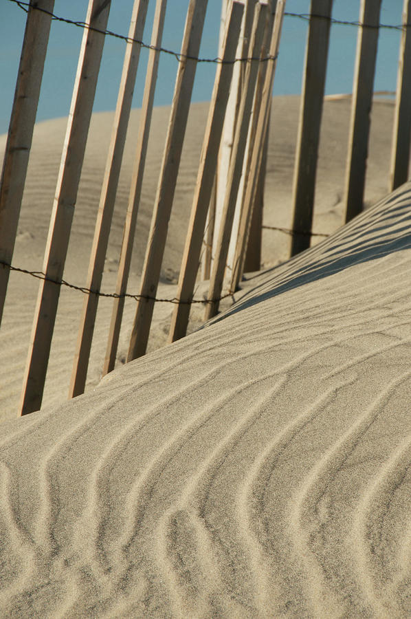Lines Photograph - Lines in the Sand by Melissa Southern