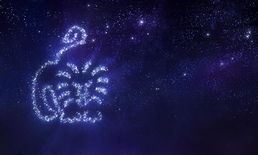 Lion zodiac sign Drawing by Da-kuk