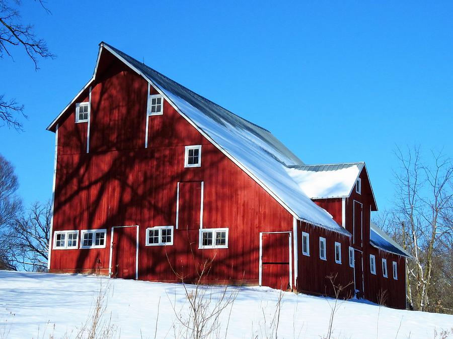Little Red Barn  by Lori Frisch