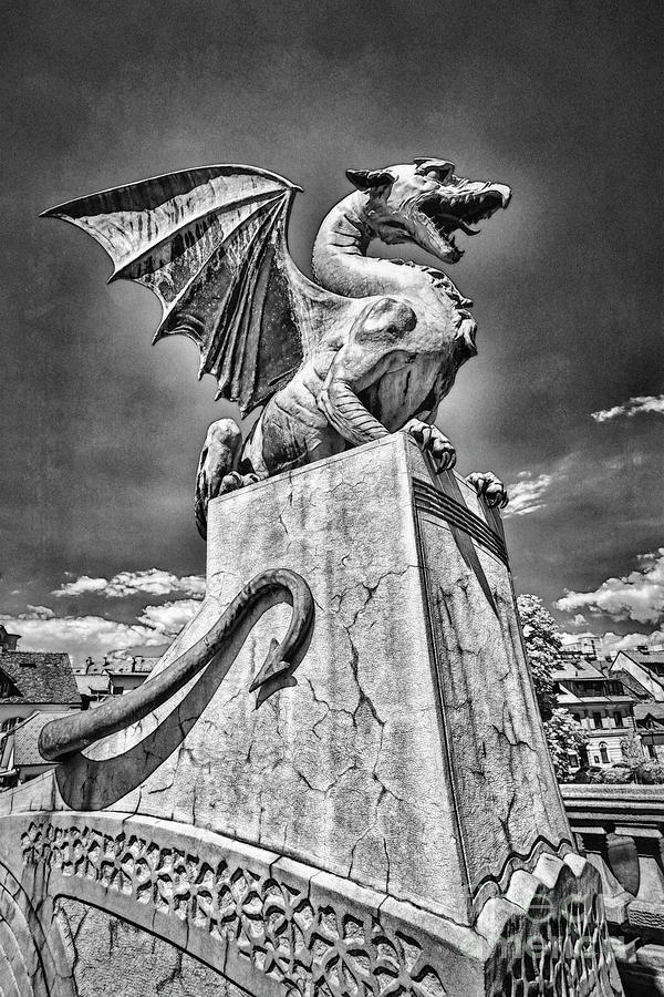 Ljubljana Dragon In Black And White Photograph