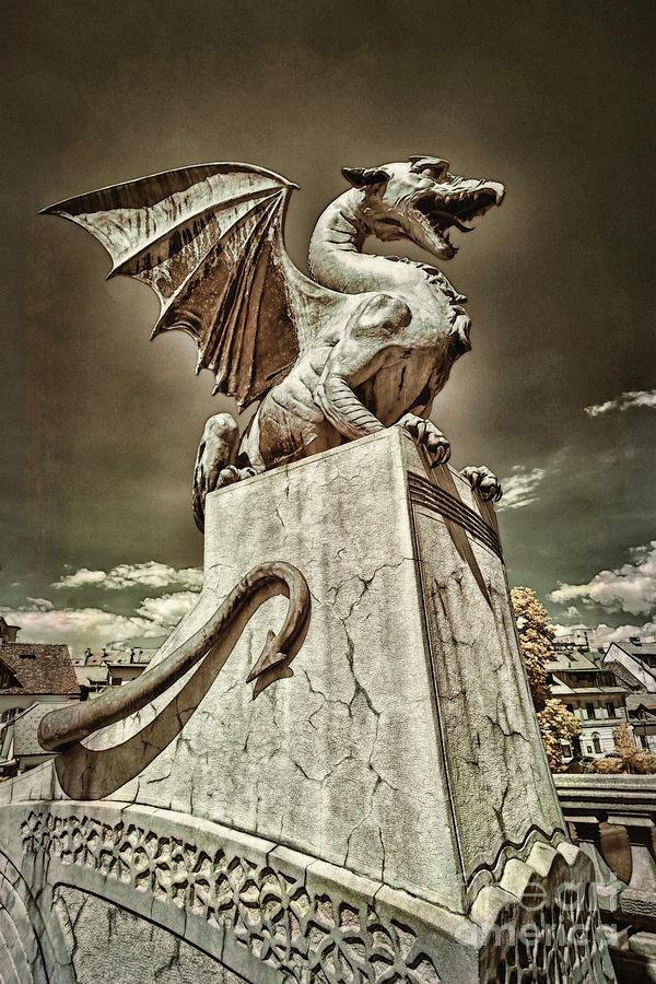 Ljubljana Dragon Photograph