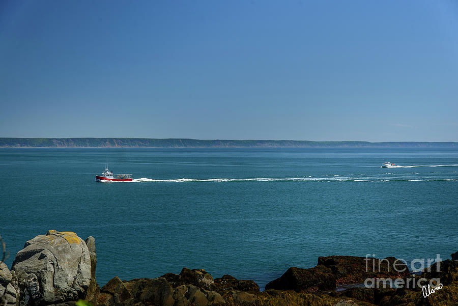Lobster Boats Bay Of Fundy Photograph