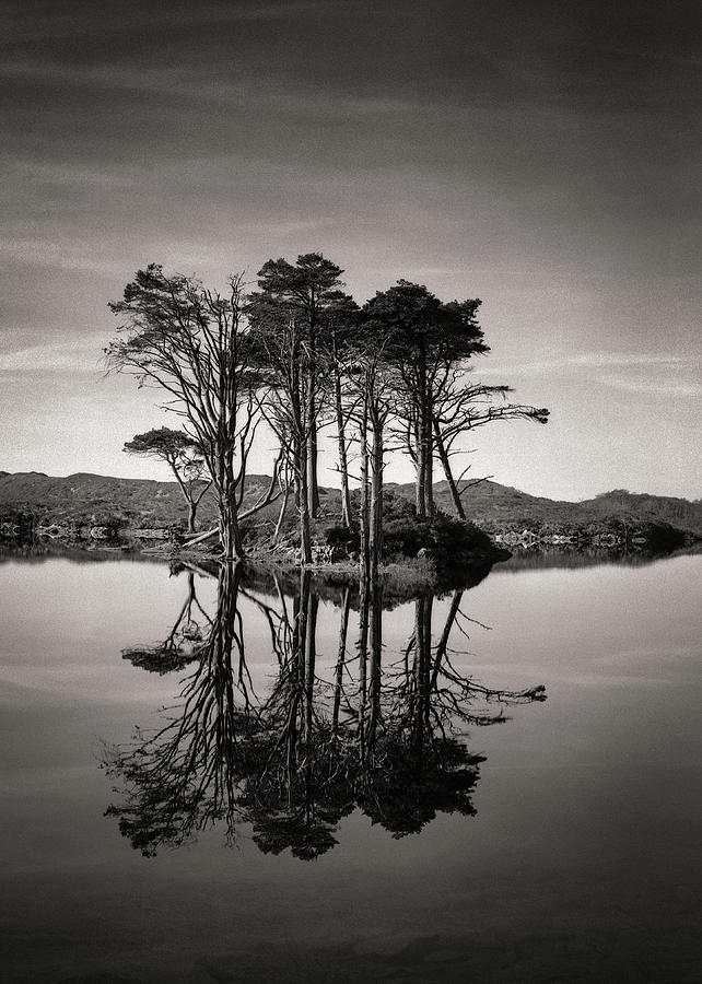 Loch Assynt Reflection II by Dave Bowman