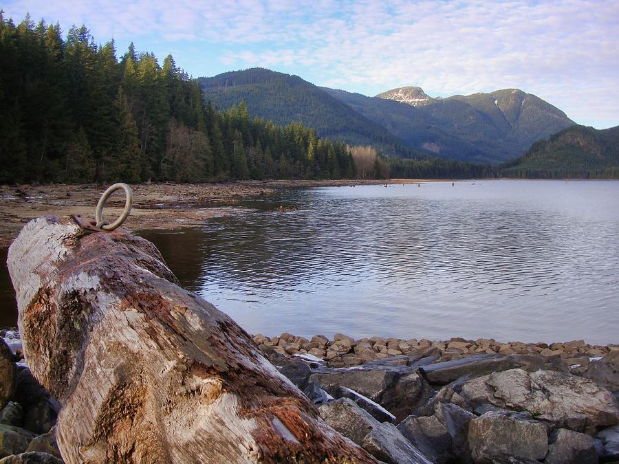 Log Lake Iron Ring Photograph