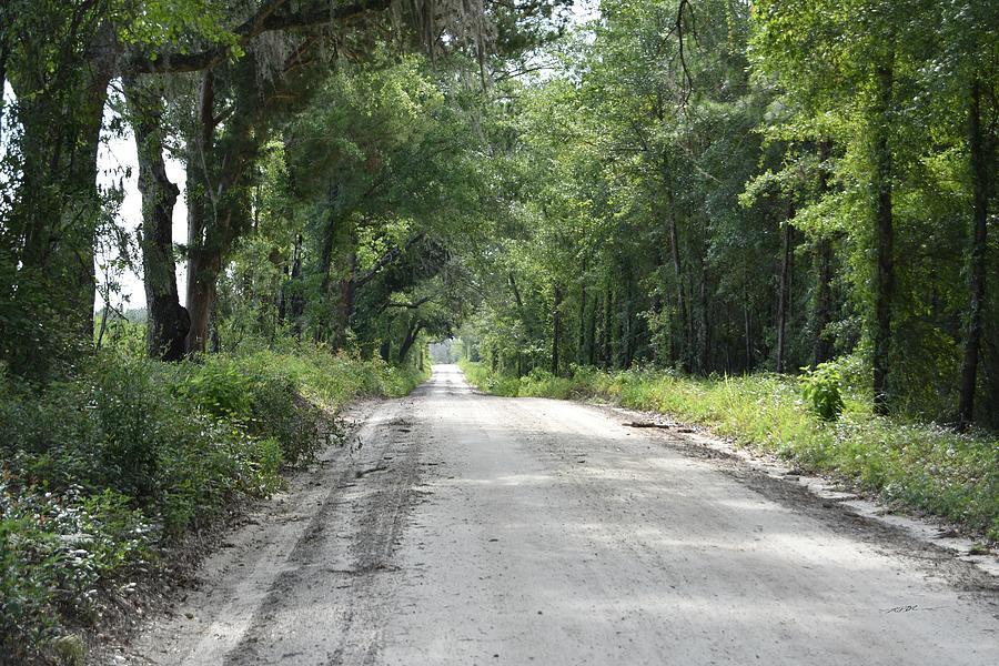 Lon Lonesome Road Photograph