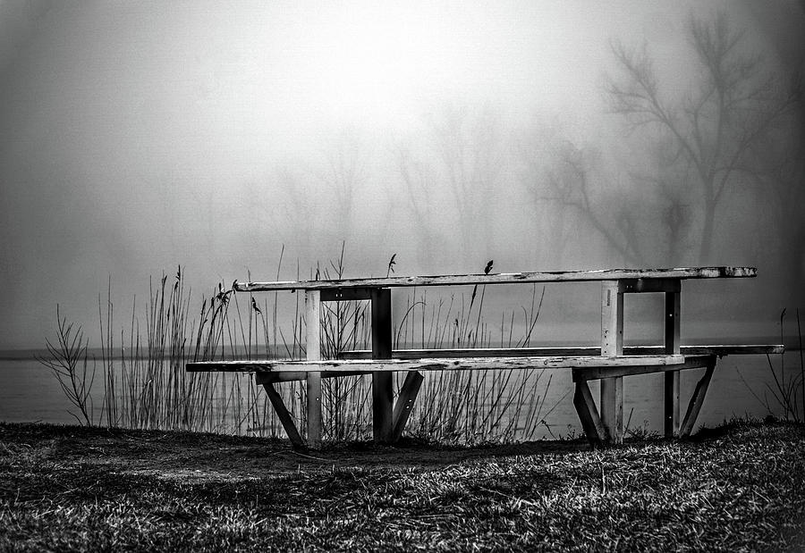 Park Photograph - Lonely by Kamie Stephen