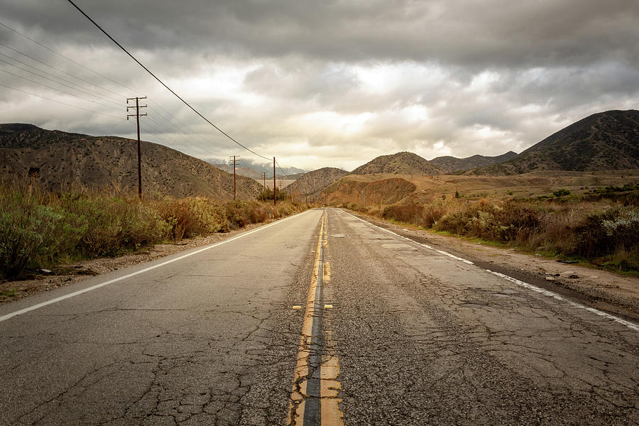 Lonely Road by Alison Frank