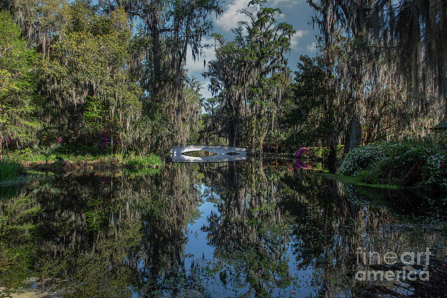 Long White Bridge - Magnolia Plantation Photograph