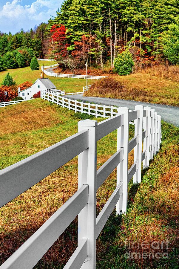 Long White Fence by Dan Carmichael