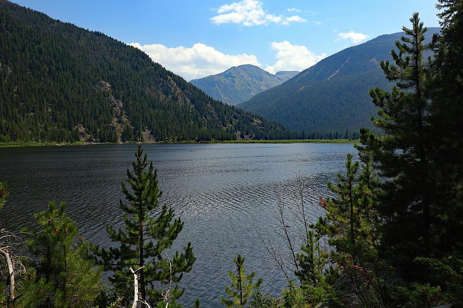 Looking Across Monarch Lake Pyrography