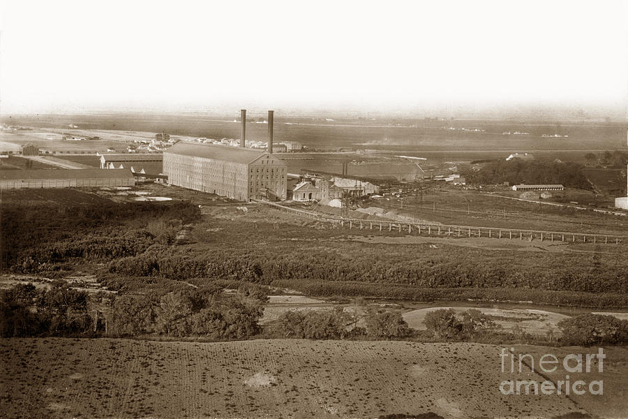 Looking across the Salinas River to the Spreckeles Beet Sugar Co by California Views Archives Mr Pat Hathaway Archives