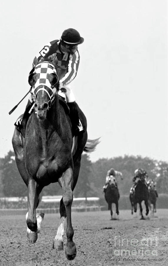 Looking Back Painting - Looking back, 1973,  Secretariat, stretch run, Belmont Stakes by Thomas Pollart