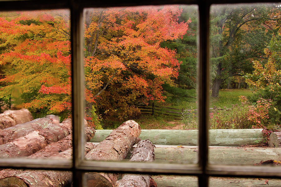 Looking out the Sawmill Window by Jeff Folger