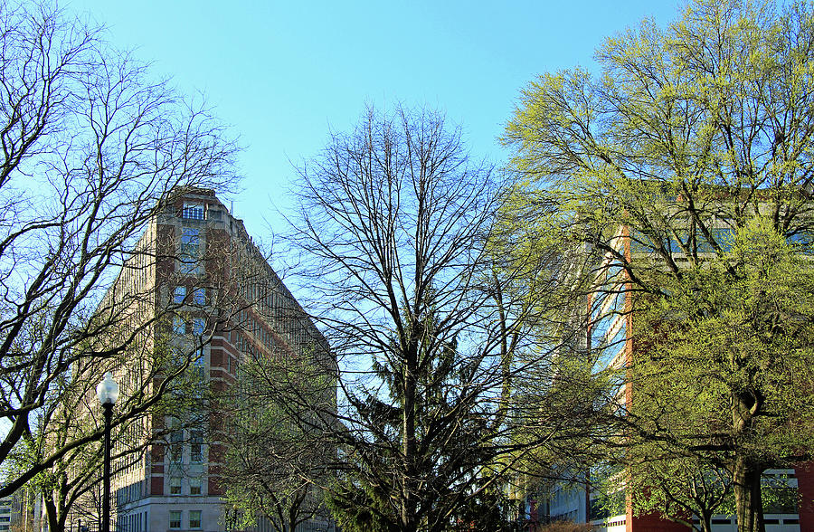 Southwest From Dupont Circle -1a Photograph
