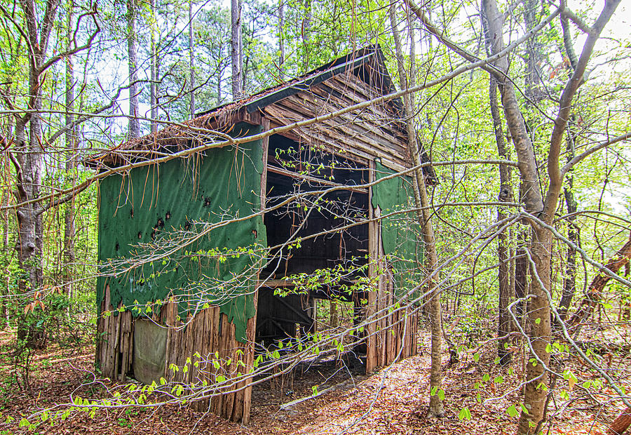 Lost In The Woods - Tobacco Barn In North Carolina Photograph