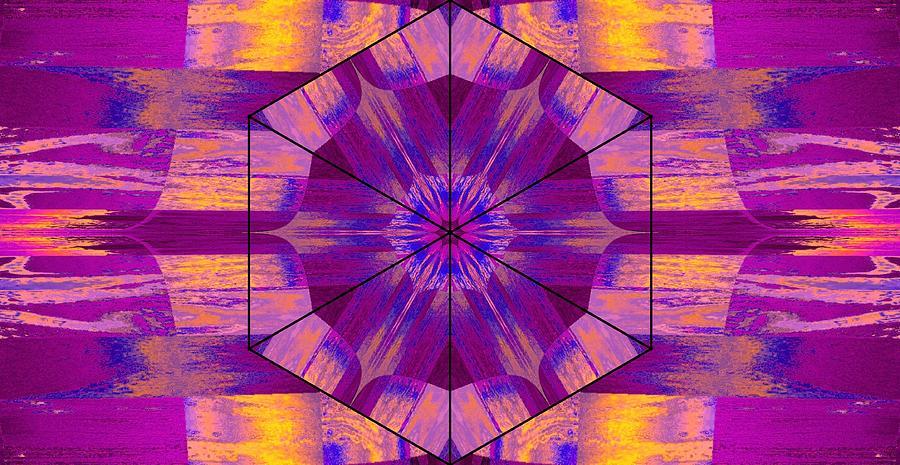 Lotus In Paint Digital Art