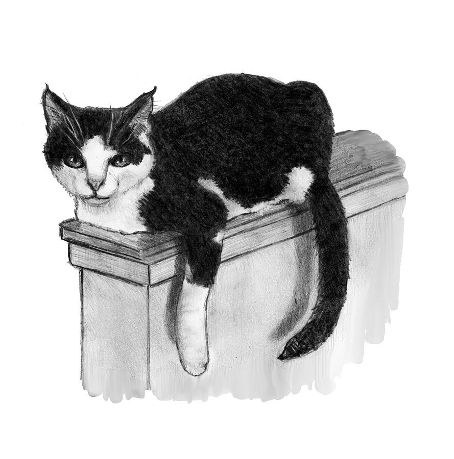 Lounging On The Ledge Drawing