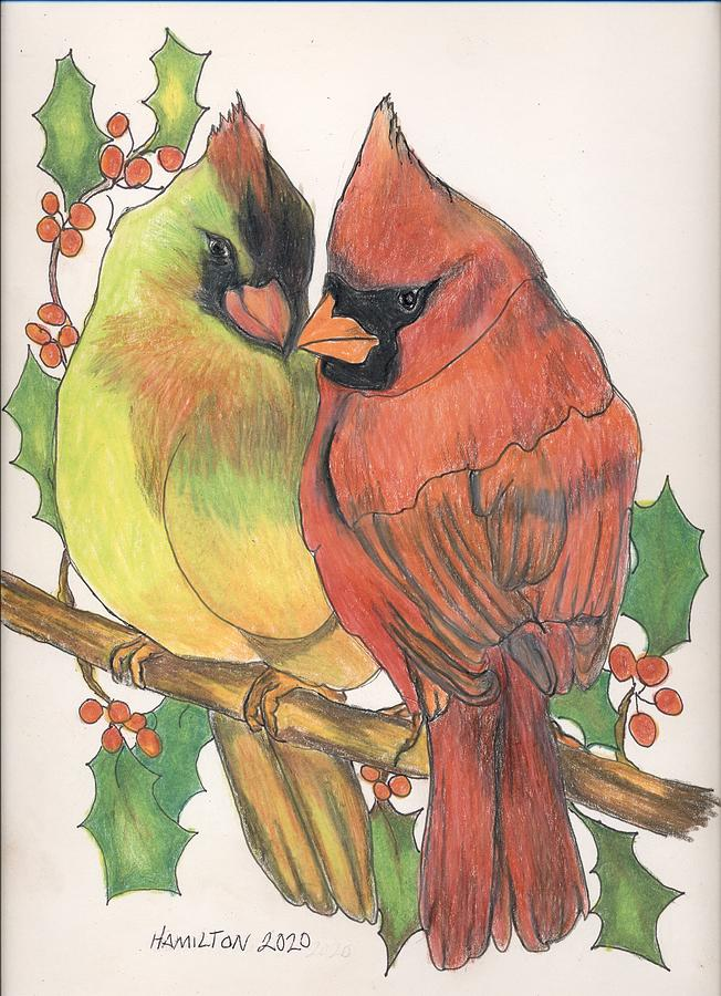 Love Birds Drawing By Sarah Hamilton