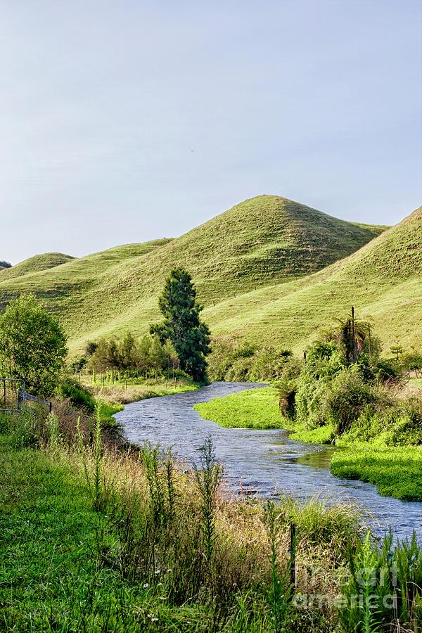 Lovely Countryside With Brook Near Potaruru, New Zeland Photograph
