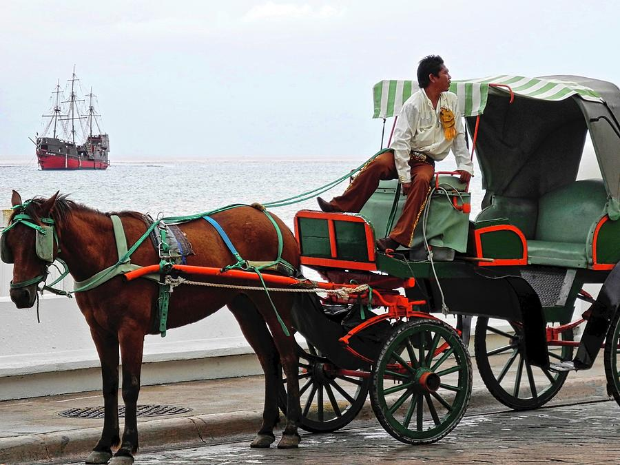 Horse Photograph - Lovely Transportation in Cozumel by Kirsten Giving