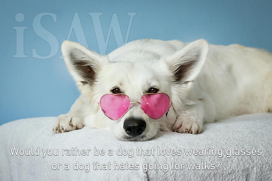 Loves Glasses Hates Walks by ISAW Company