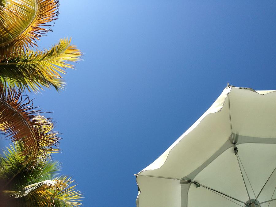 Low angle view of palm trees and beach umbrella Photograph by Dennis Garcia / FOAP
