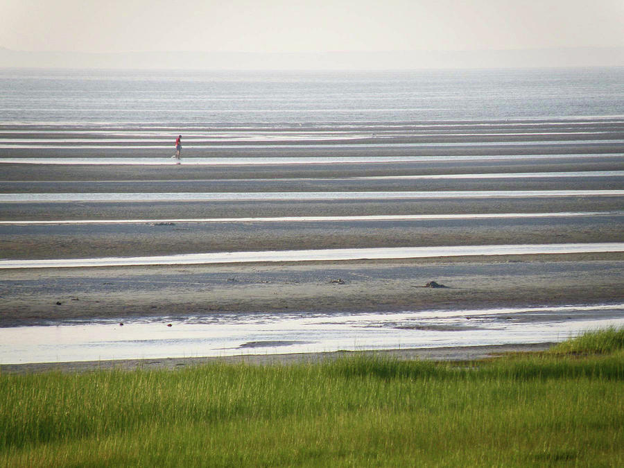 Tide Photograph - Low Tide by Jean Hall