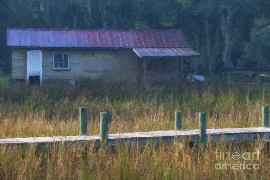 Lowcountry Golden Marsh Grass Hues Of Gold Photograph