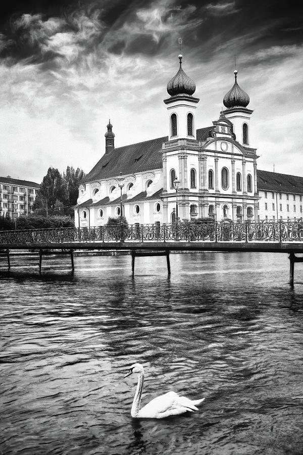 Lucerne Switzerland Swan Lake Black And White Photograph