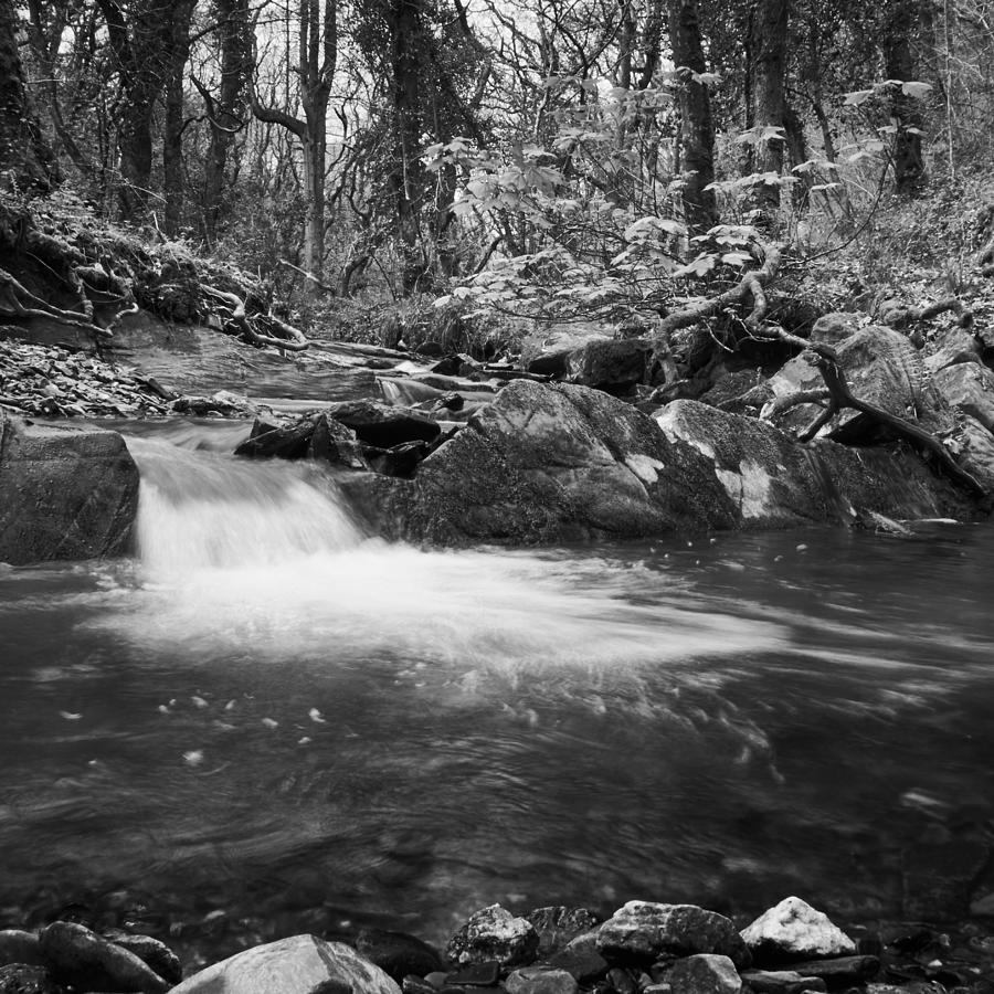 Black And White Photograph - Ludon Valley Pool by Bear R Humphreys