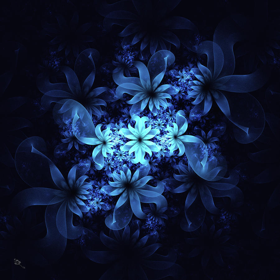 Luminous Flowers Digital Art By Cameron Gray