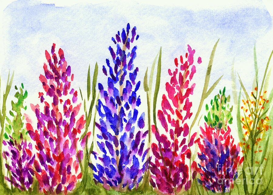 Lupines Painting - Lupine Flowers Watercolor Painting by Itaya Lightbourne