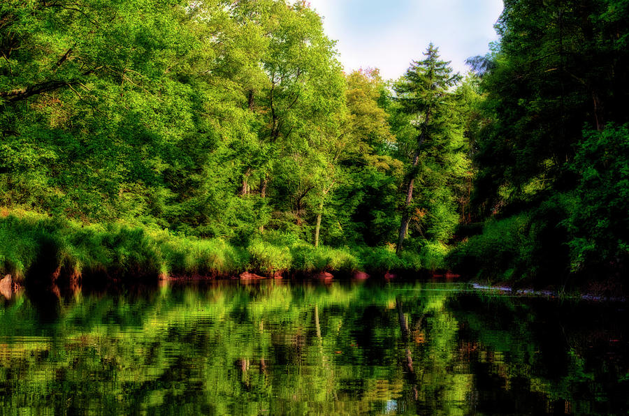 Lush green reflections on a river by Dan Friend