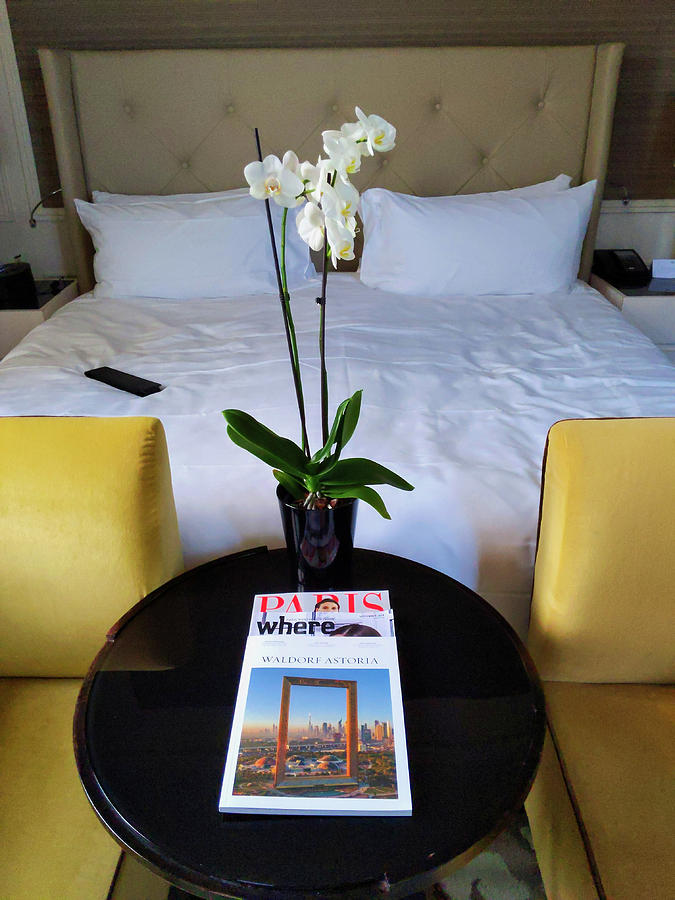 Luxurious Getaway by Portia Olaughlin