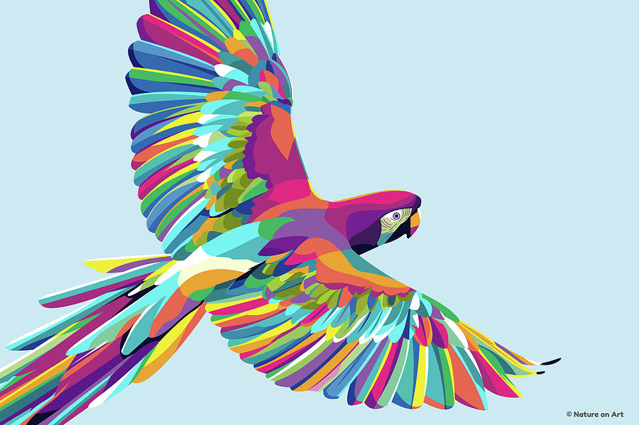 Macaw Parrot In Flight Digital Art
