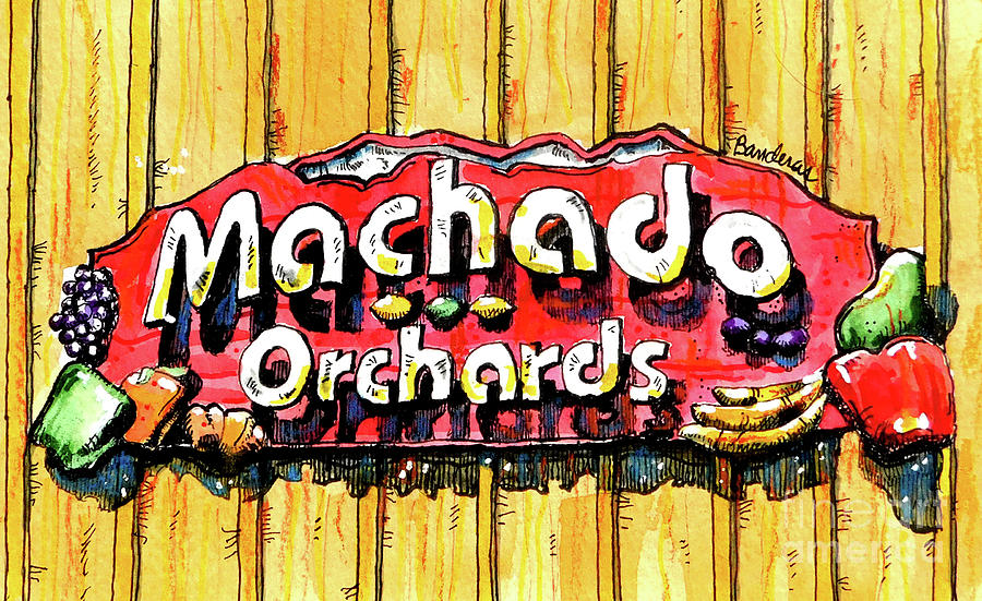 Machado Orchards Sign by Terry Banderas