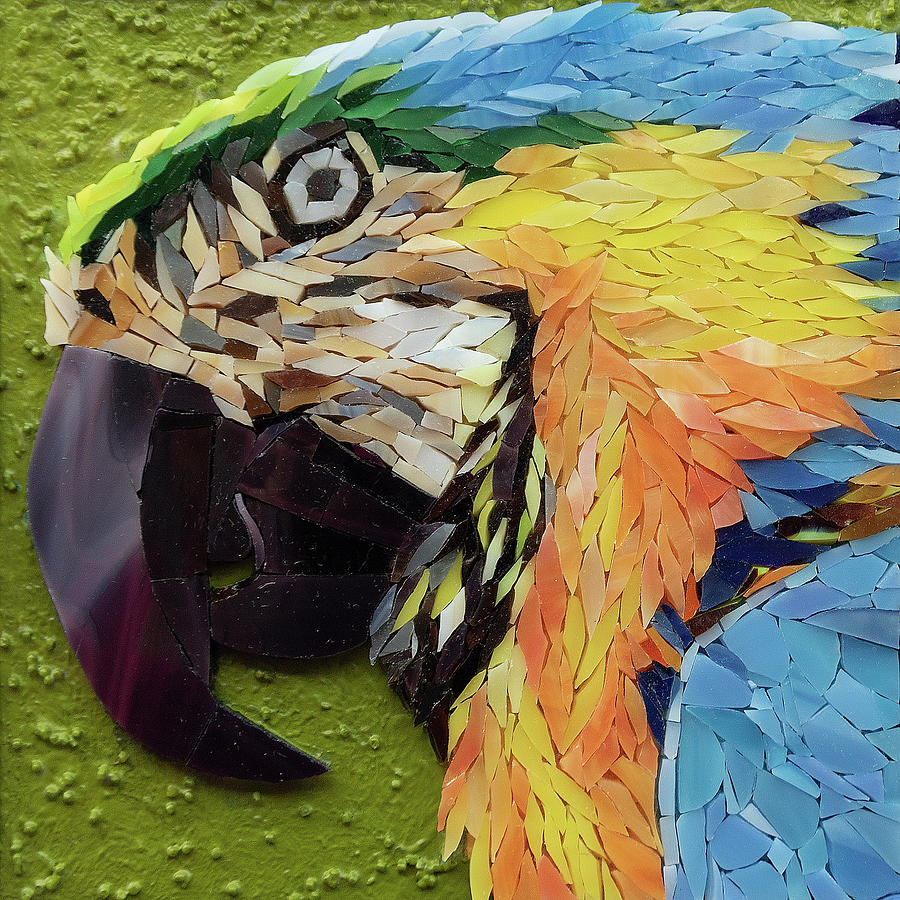 Mackey the Blue and Yellow Macaw by Adriana Zoon