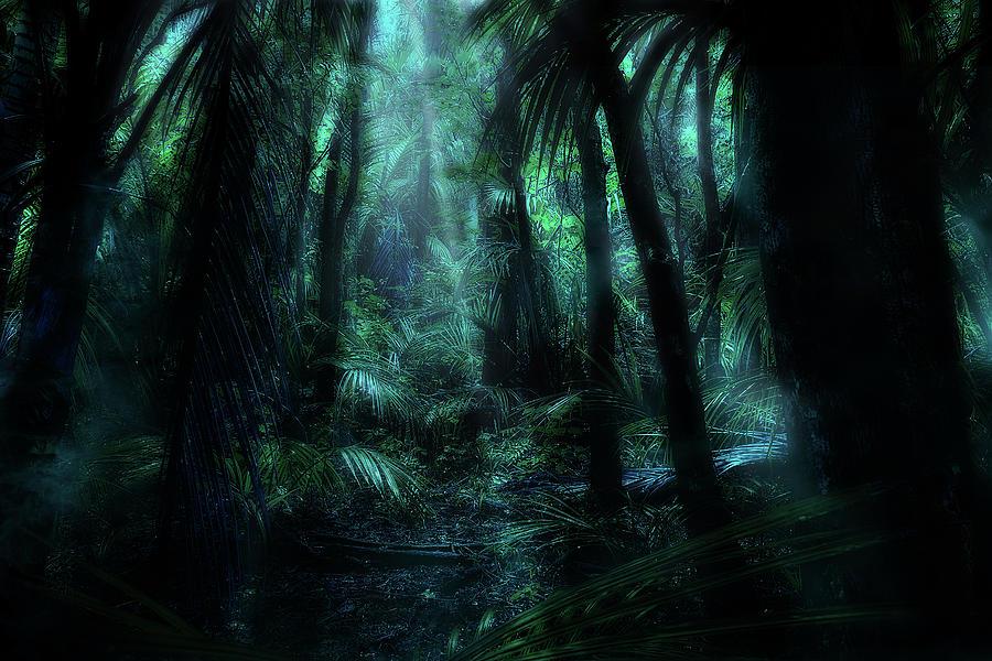 Magic Forest #2 by Werner Kaffl