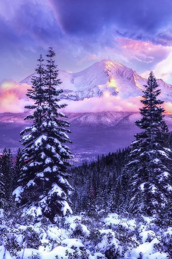 Magical Winter Morning Photograph