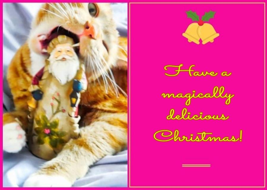 Magically Delicious Christmas by Judy Kennedy