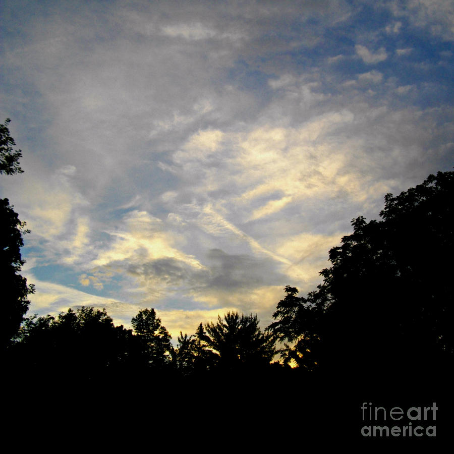 Magnificence In The Sky Photograph