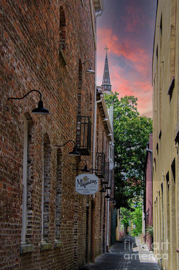Magnolia Alley - Charleston South Carolina Photograph