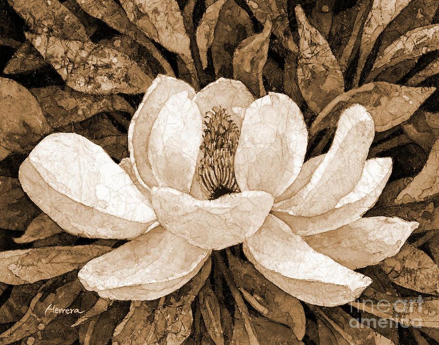 Magnolia Grandiflora In Sepia Tone Painting