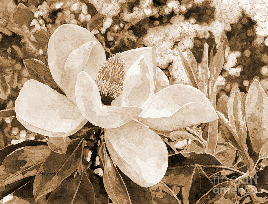 Magnolia Melody In Sepia Tone Painting