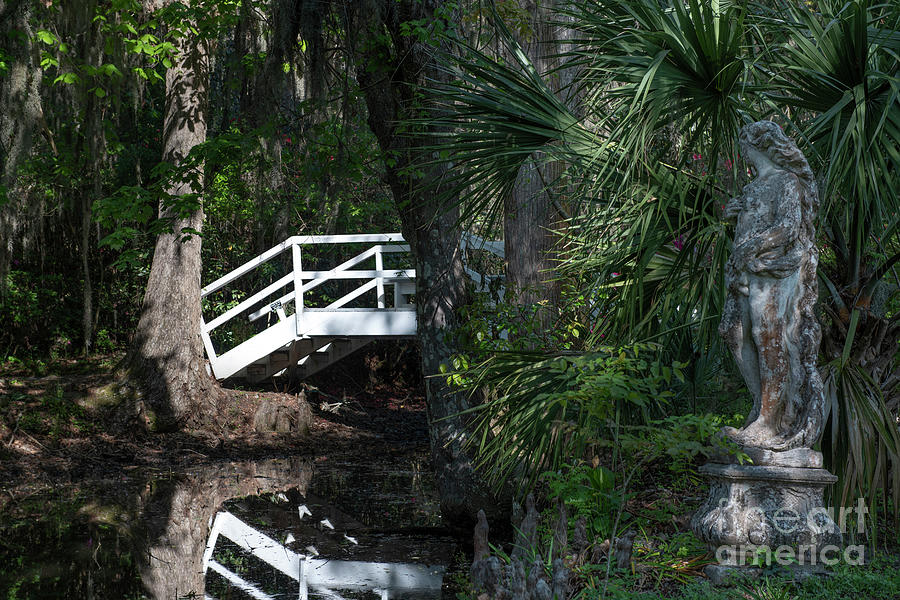 Magnolia Plantation And Gardens Statue And Wooden Bridge Photograph