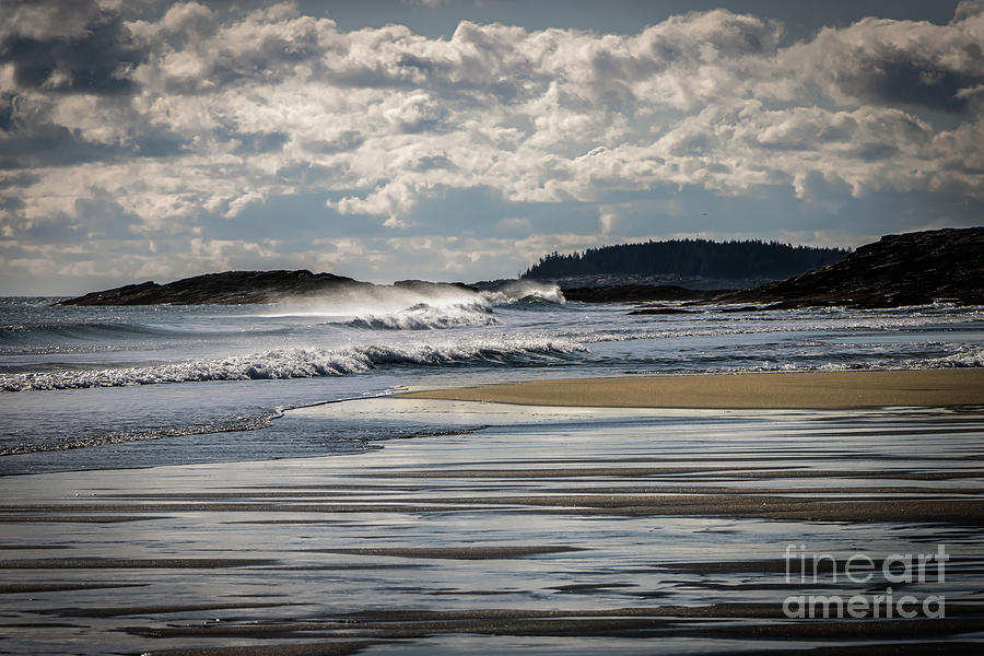 Maine Coast Beach by Elizabeth Dow